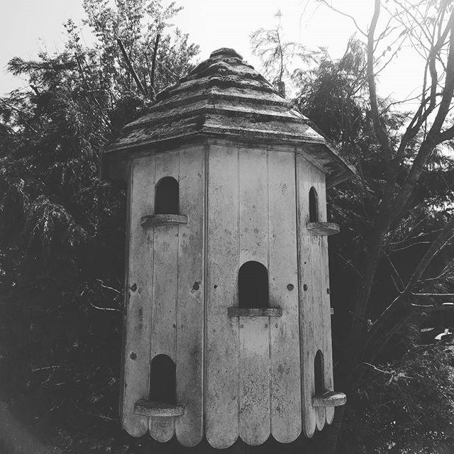 Block of flats for birds! #openfarmsunday